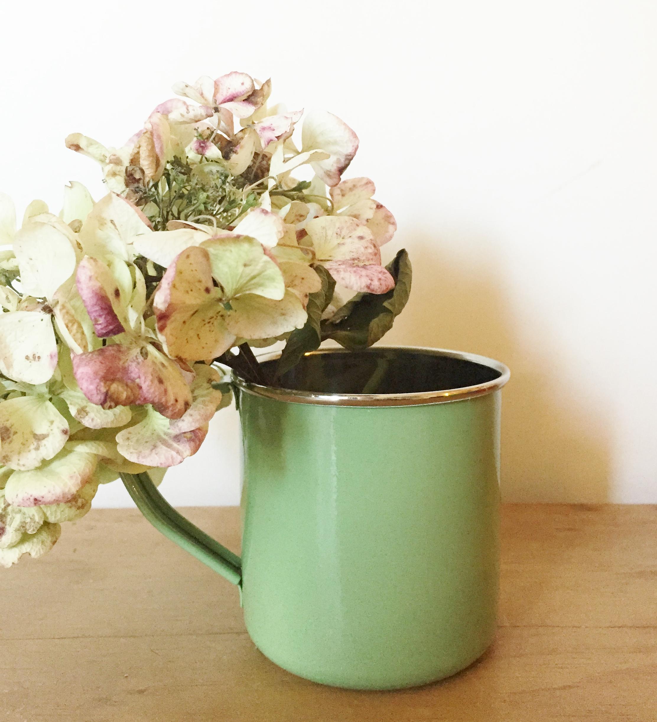 Sage green enamelware mug jasmine white sage green enamelware mug izmirmasajfo Choice Image