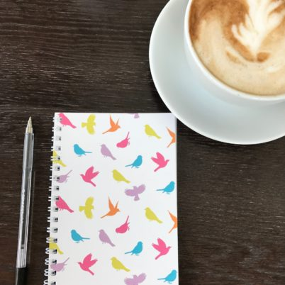 Birds of Paradise notebook in multi colour by Jasmine White